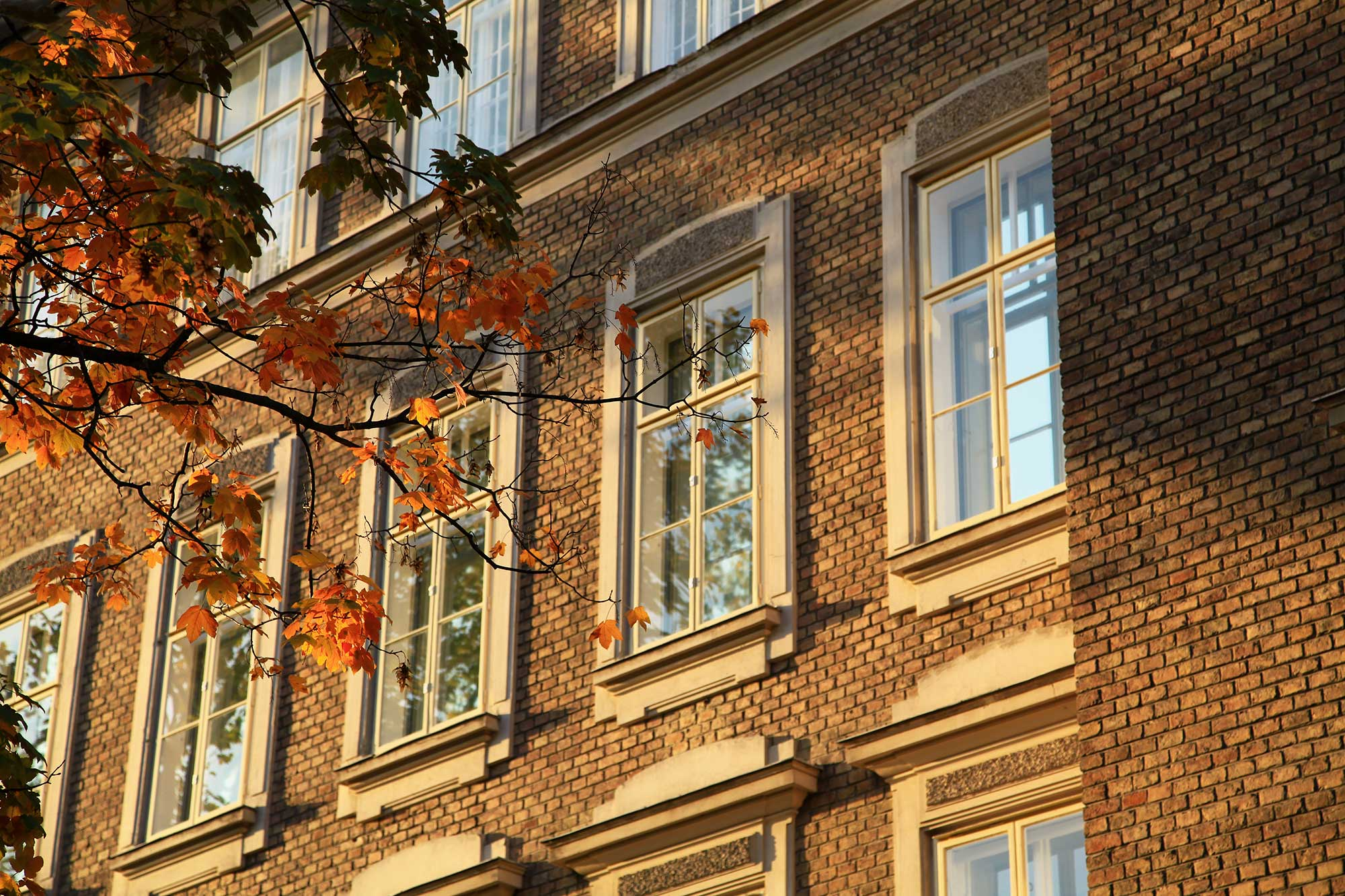 Autumn in Vienna. © Ulli Maier & Nisa Maier