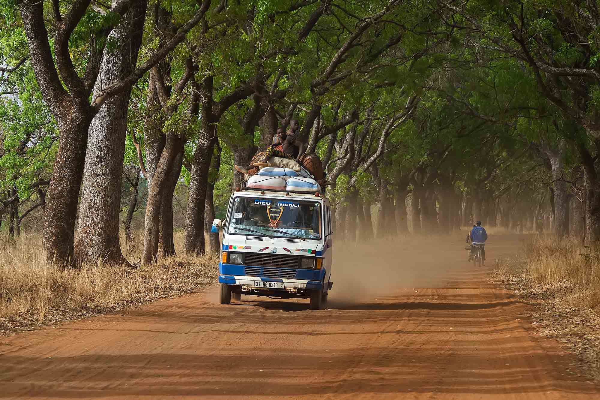 bush-taxi-driving-through-alley-of-trees-banfora-burkina-faso-africa