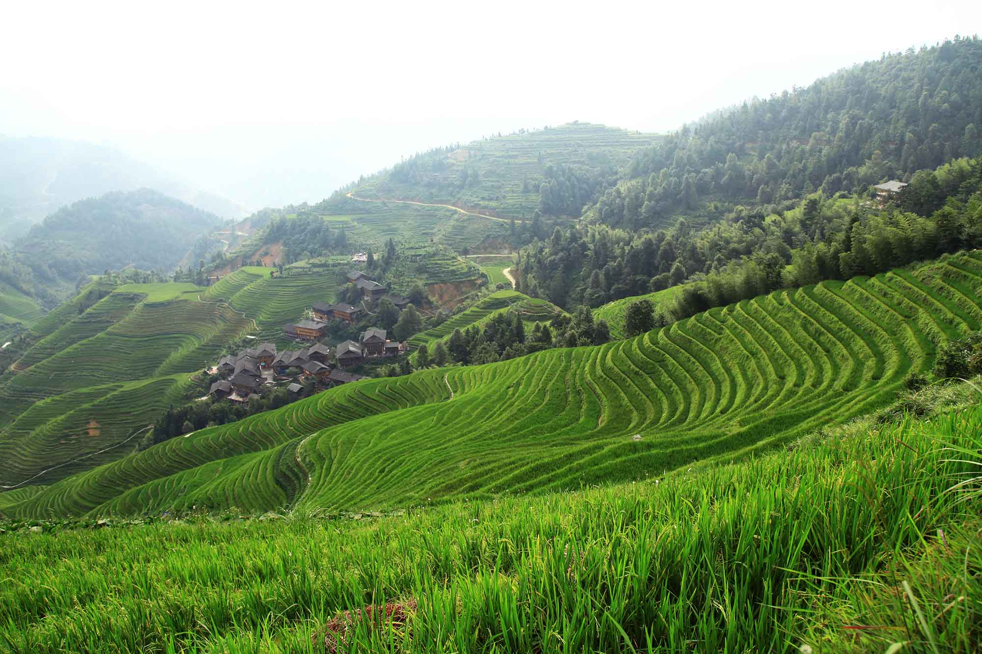 dazhai-village-longji-rice-terraces-guangxi-china