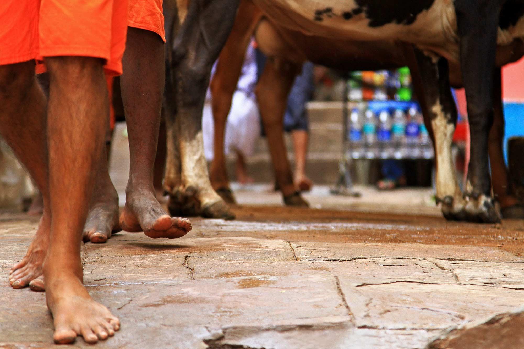 feet-streets-varanasi-india