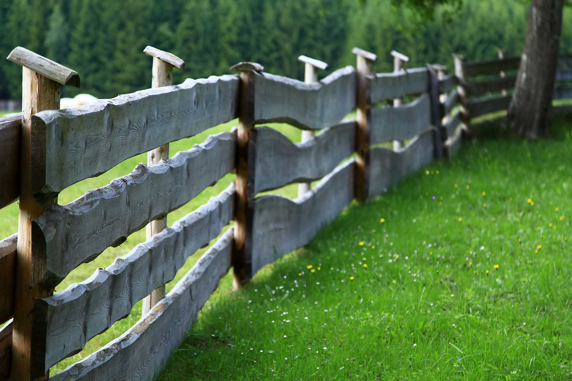 A fence in Goestling, Lower Austria. © Ulli Maier & Nisa Maier
