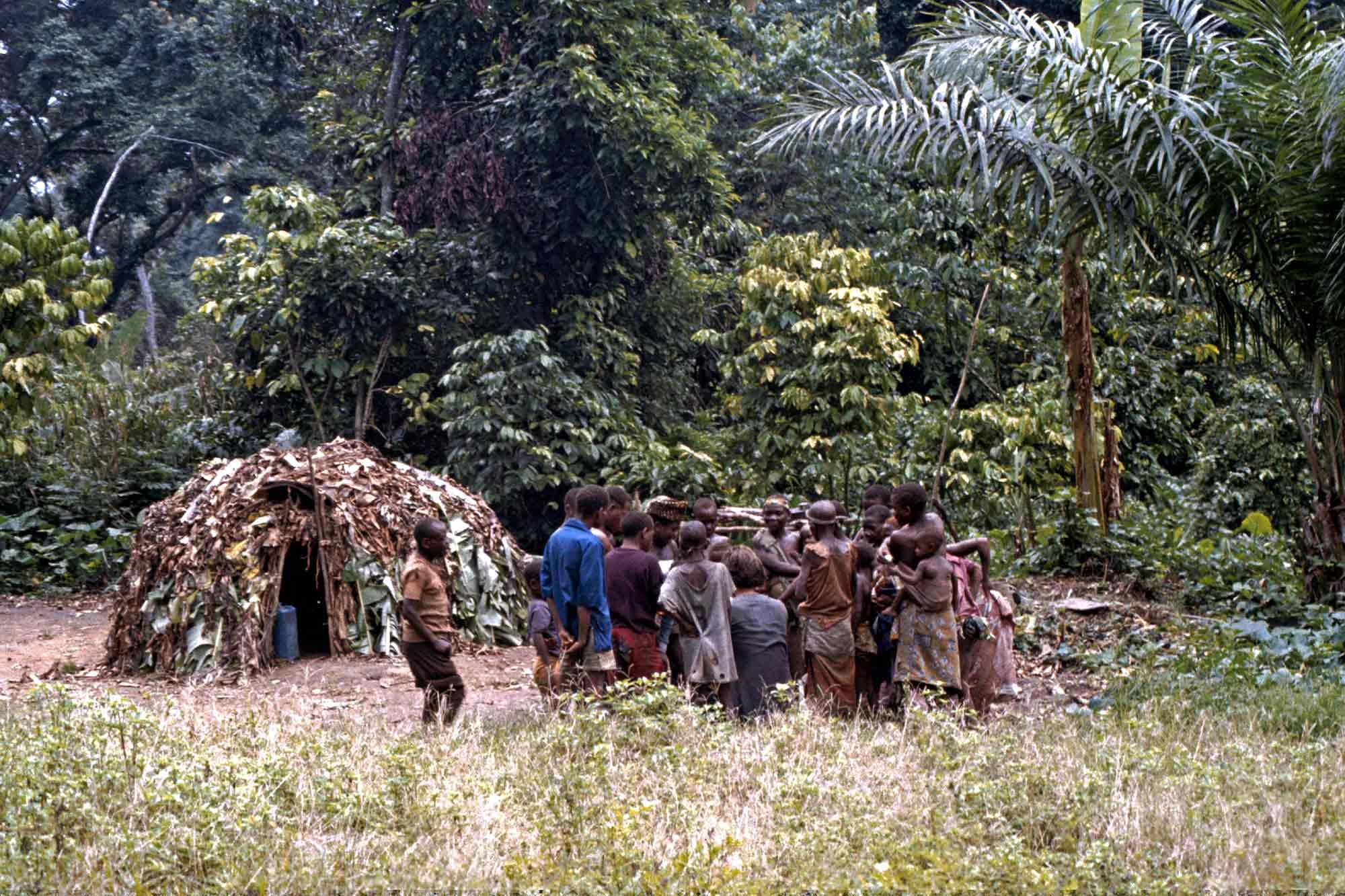 pygmees-congo-jungle-africa