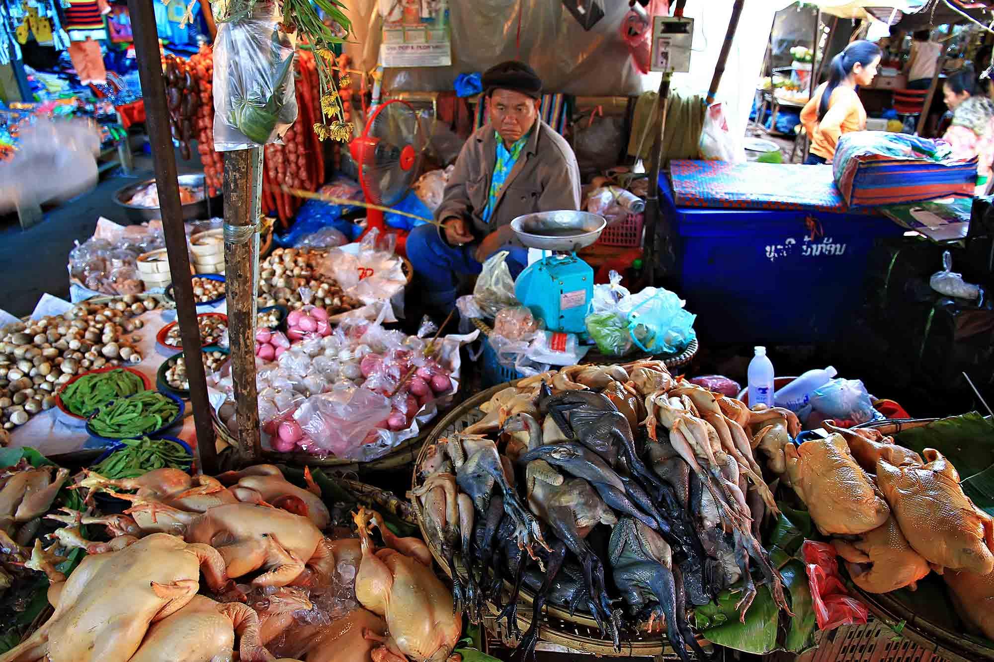 Market life in Tha Khek, Laos. © Ulli Maier & Nisa Maier