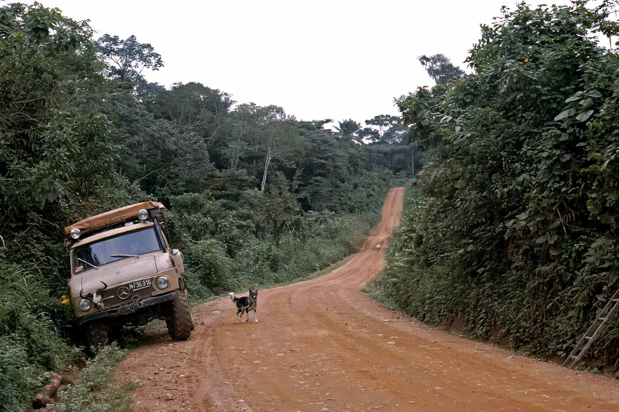 unimog-truck-jungle-congo-zaire-africa