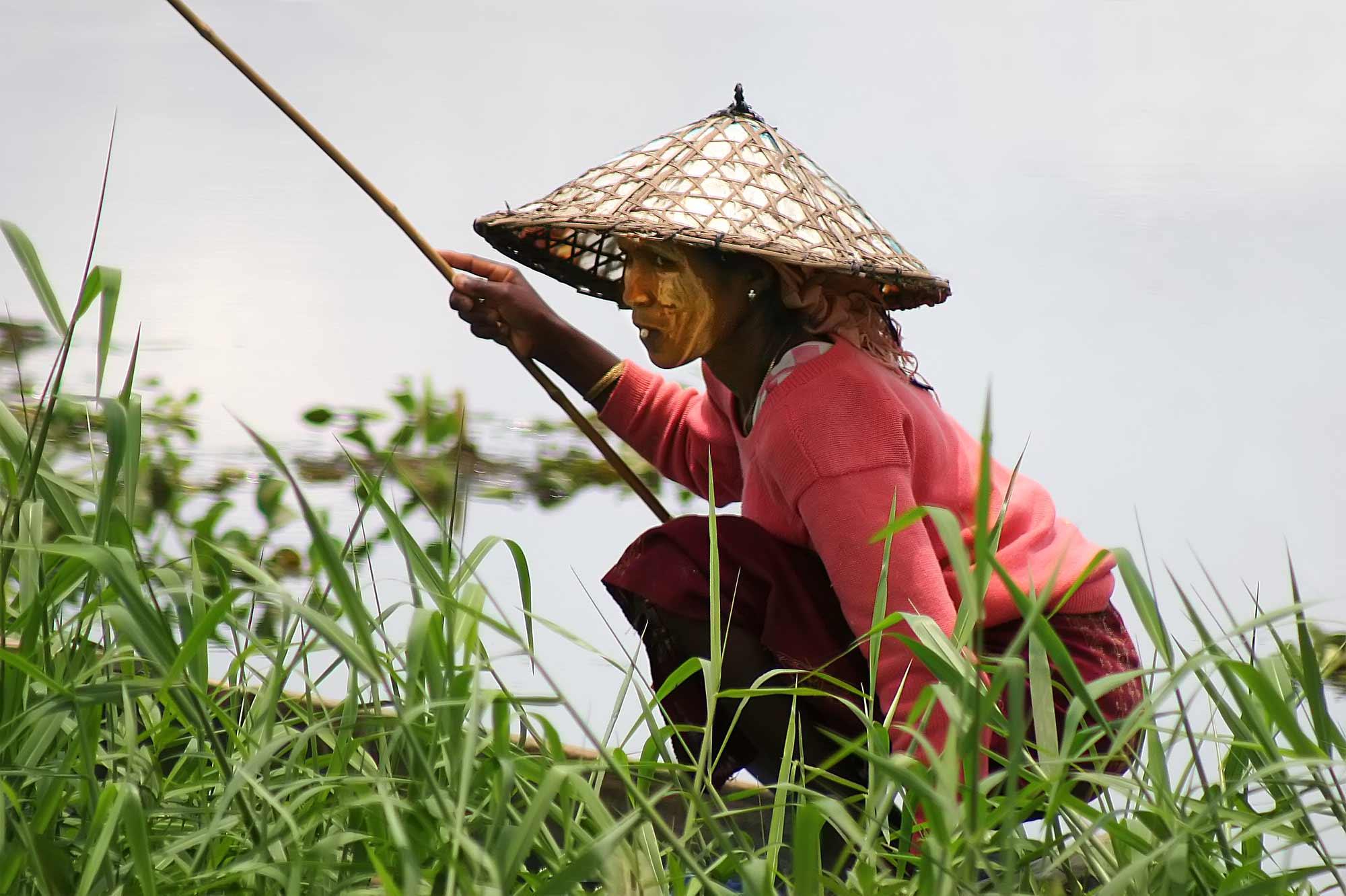 woman-imphal-lake-loktak-india-fishing