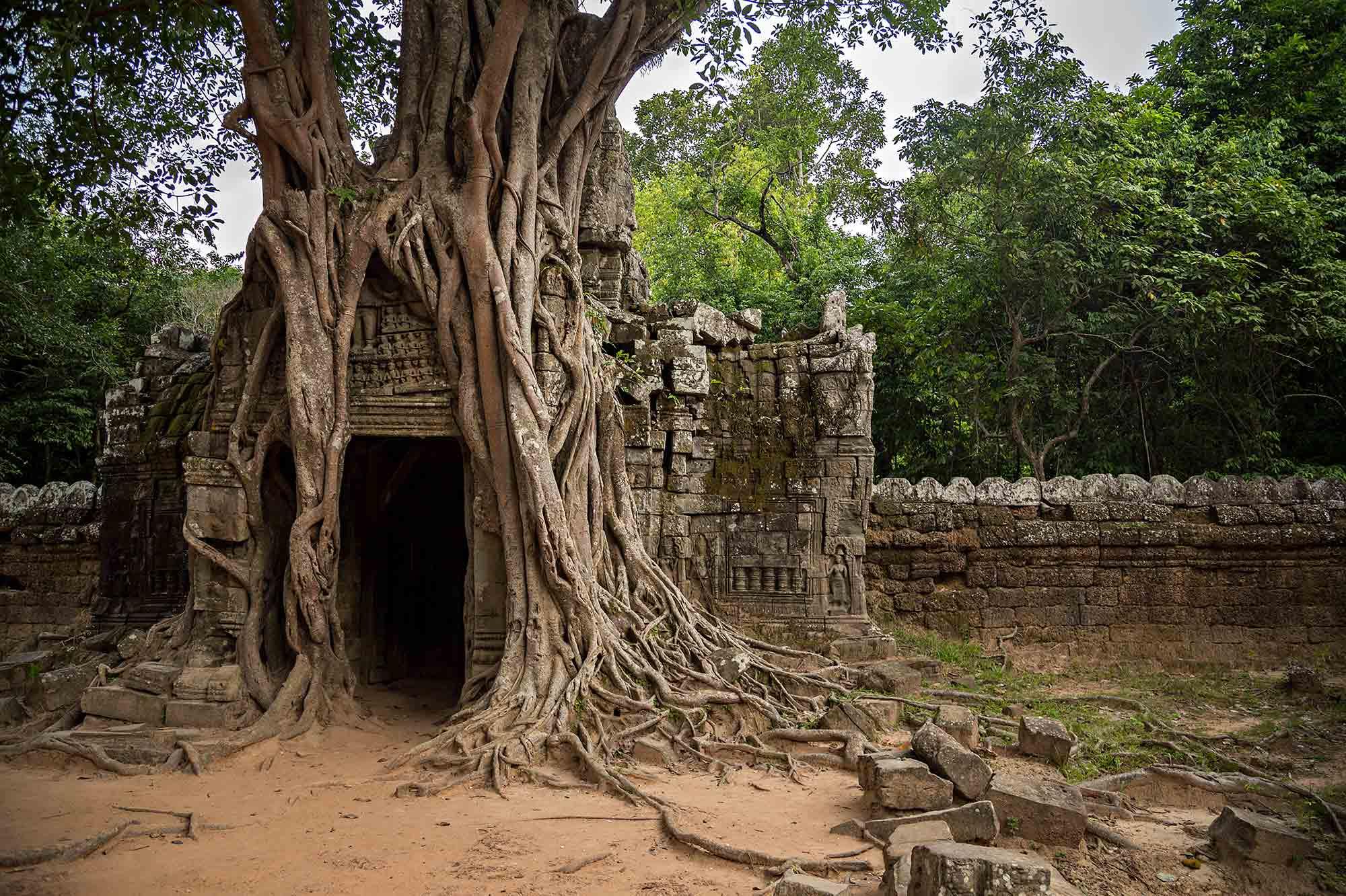 Ta Som Temple at Angkor Wat, Cambodia. © Ulli Maier & Nisa Maier