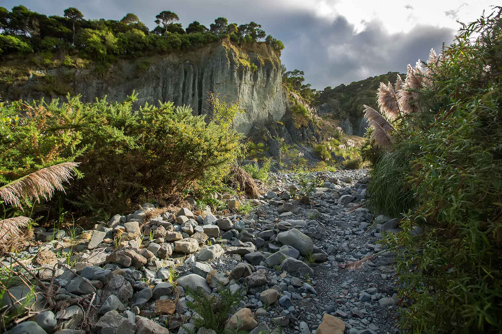 Puntangirua Pinnacles, Aorangi Forest Park in New Zealand. © Ulli Maier & Nisa Maier