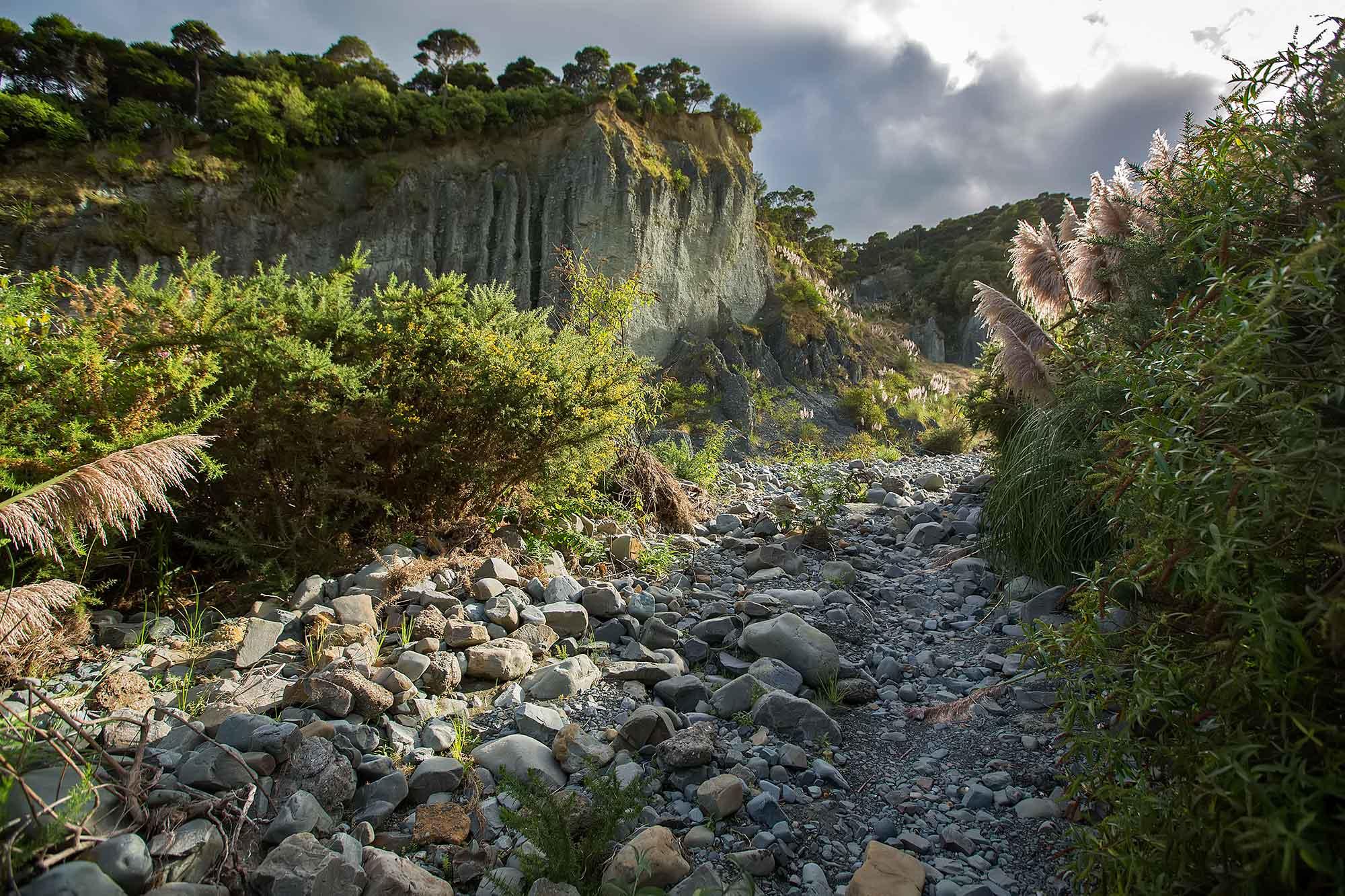 Puntangirua Pinnacles, Aorangi Forest Park in New Zealand. © Ulli Maier & Nisa Maier