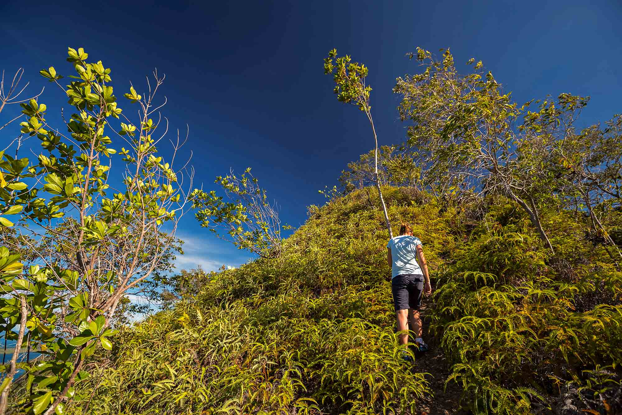 Hiking up the mountain on Cubadak island in West Sumatra, Indonesia. © Ulli Maier & Nisa Maier