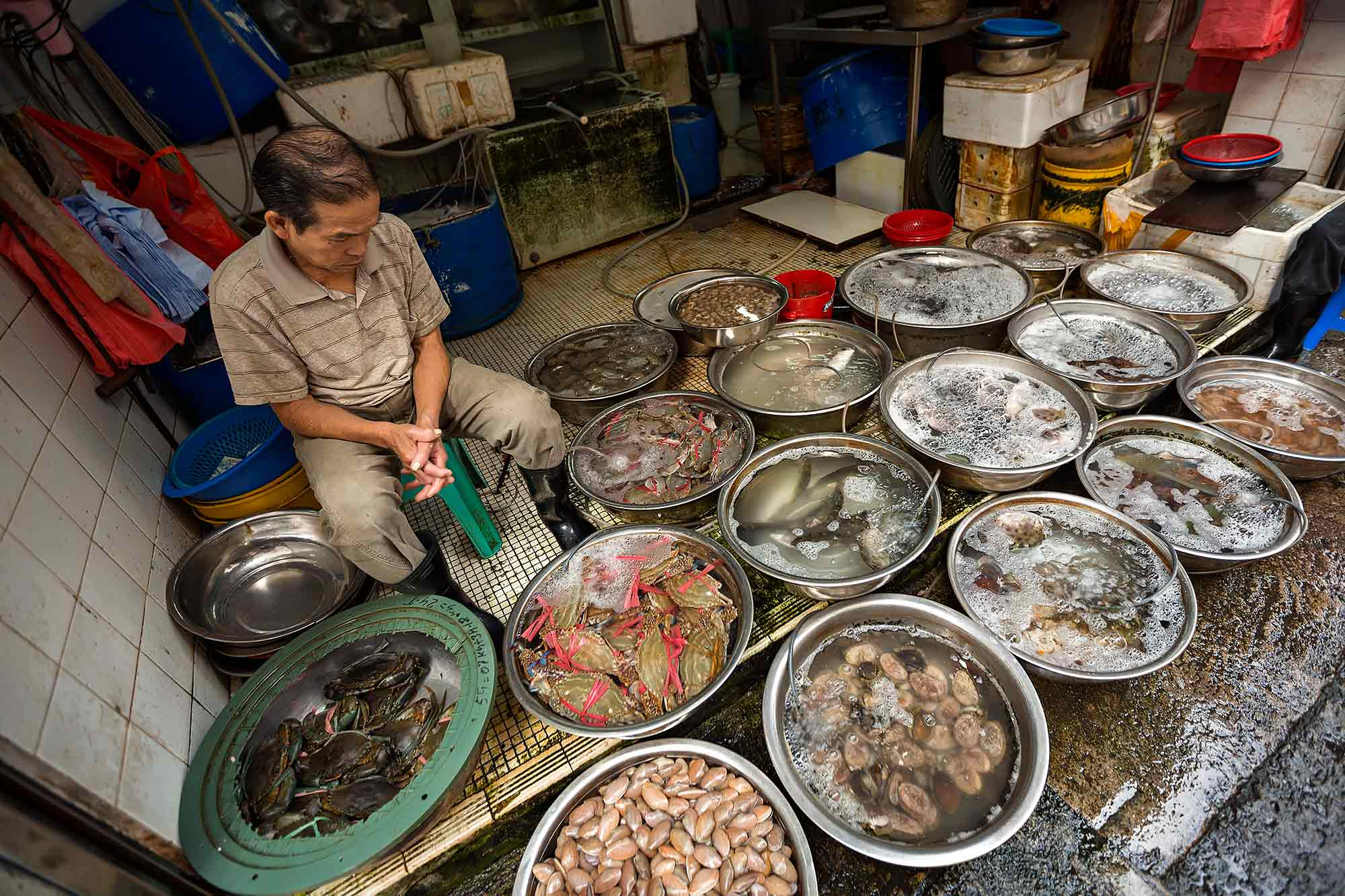 Yao Matei fish market in Mong Kok, Hong Kong. © Ulli Maier & Nisa Maier