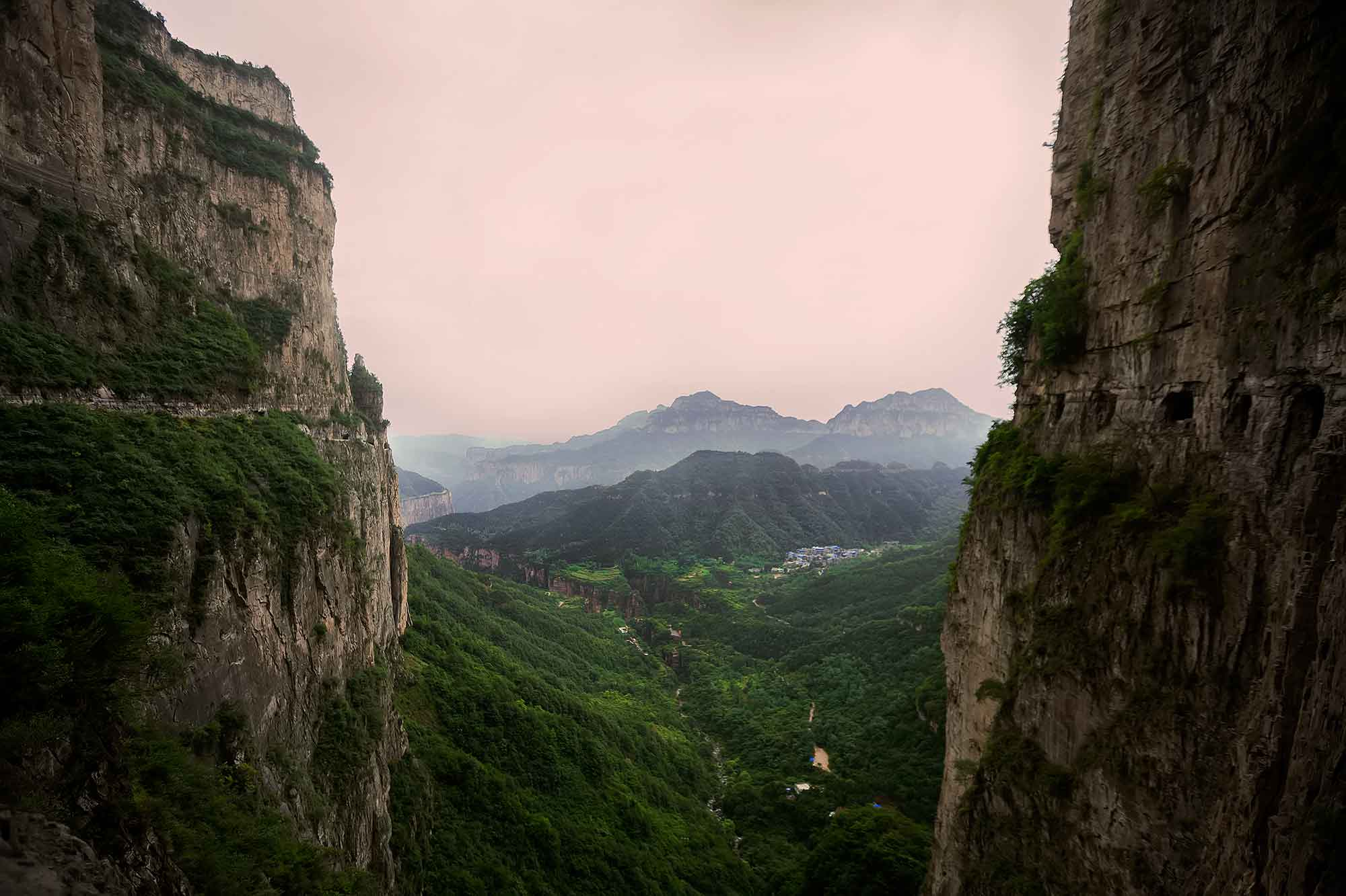 The Guoliang Tunnel Toad in the Taihang Mountains, Henan. © Ulli Maier & Nisa Maier
