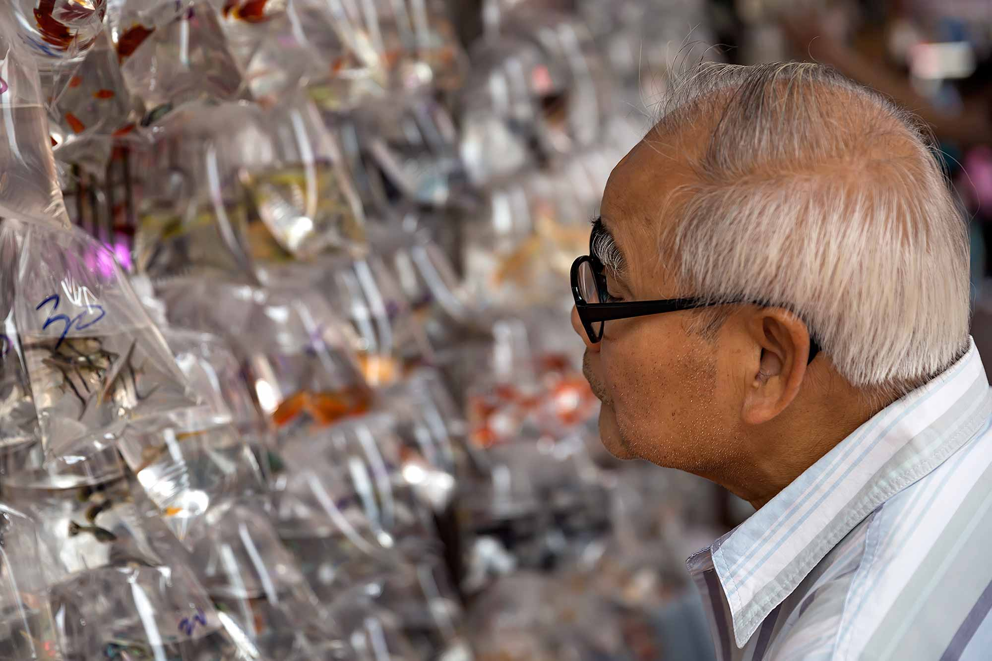 A man deciding which fish to buy in Goldfish Street, Hong Kong. © Ulli Maier & Nisa Maier
