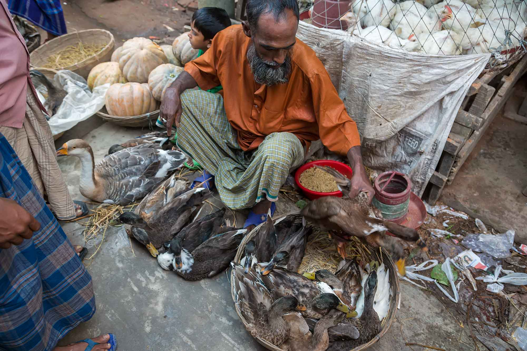 Man selling ducks in the streets of Dhaka, Bangladesh. © Ulli Maier & Nisa Maier