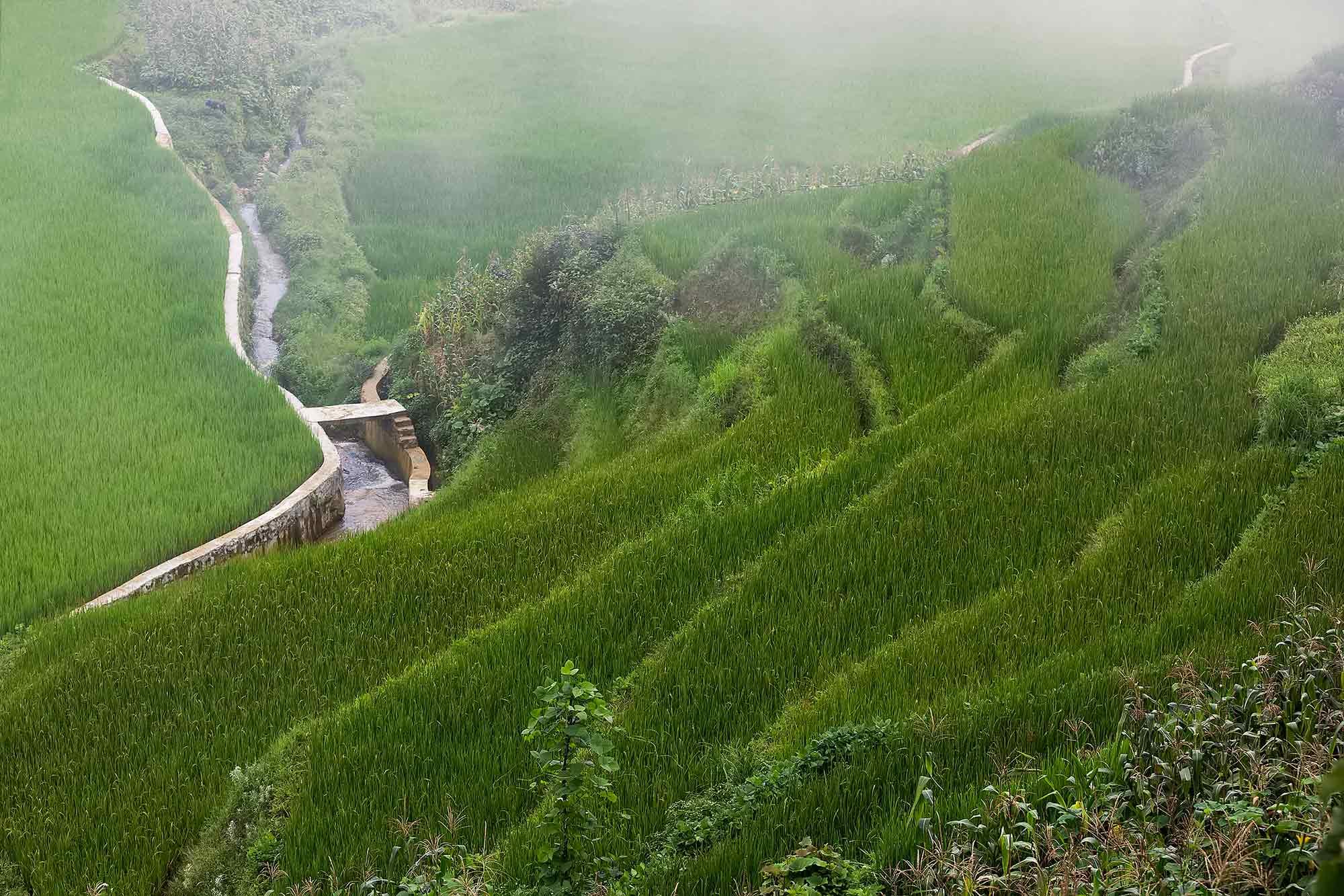 The rice terraces in Duoyishu, Yunnan. © Ulli Maier & Nisa Maier