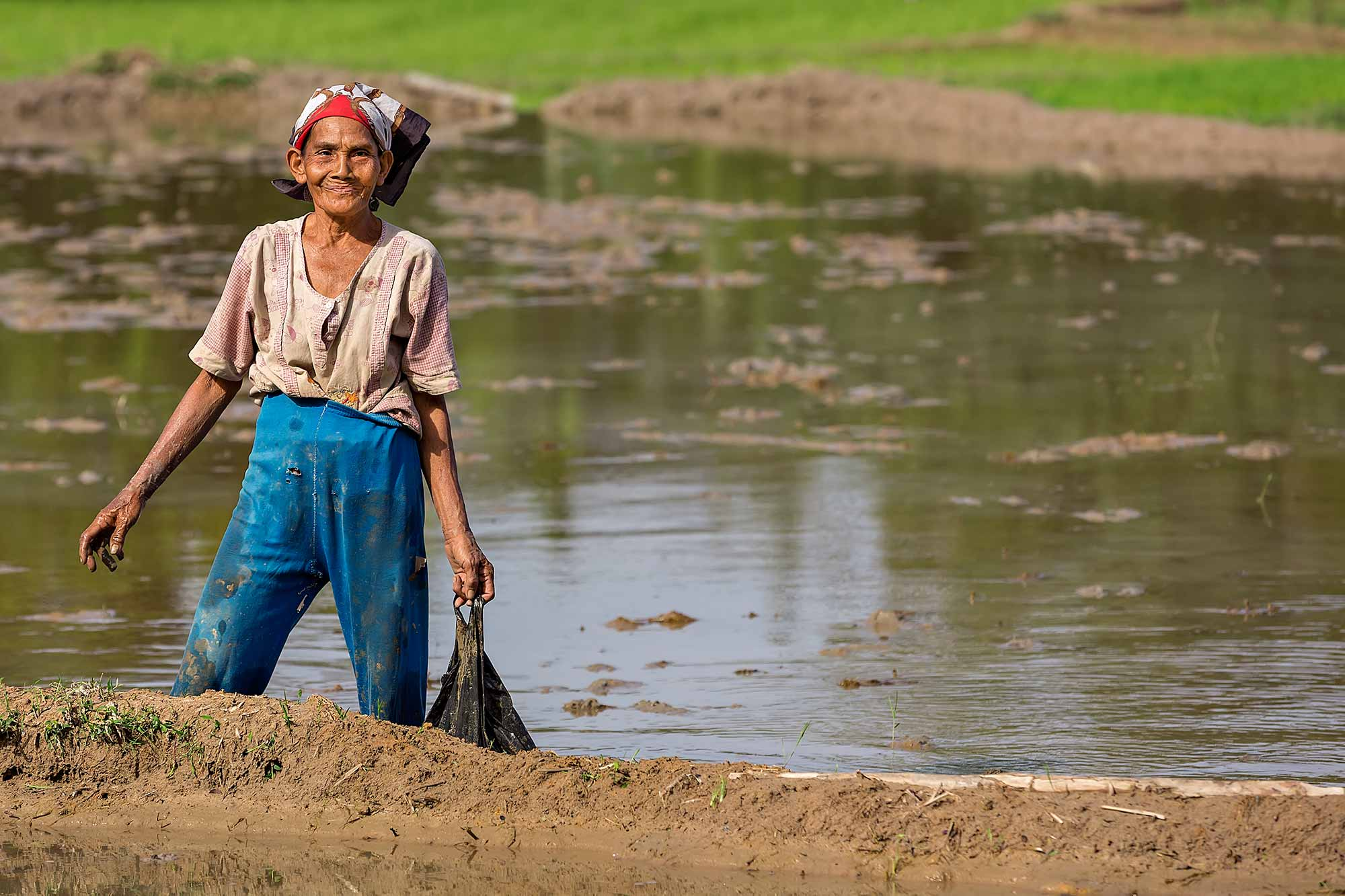 An older woman working in the rice fields in West Sumatra, Indonesia. © Ulli Maier & Nisa Maier