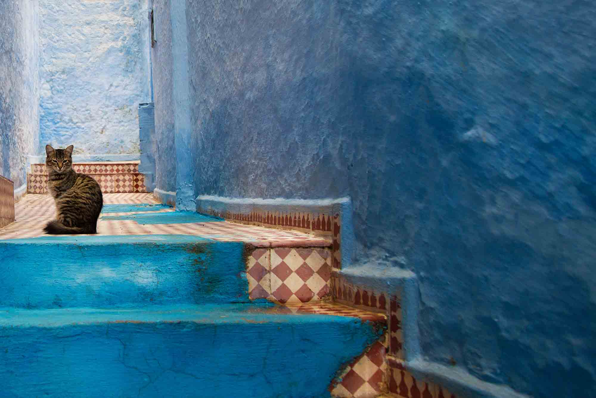 Chefchaouen is a great place to relax, explore and take day trips to the cool green hills. © ULLI MAIER & NISA MAIER