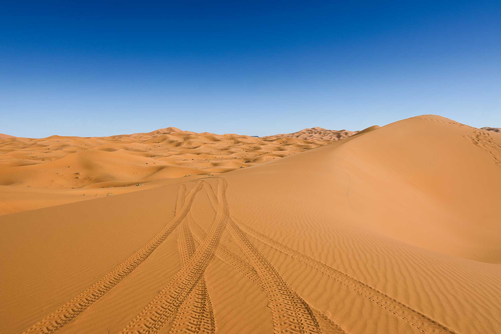 The dunes of Erg Chebbi reach a height of up to 150 meters in places and altogether it spans an area of 50 kilometers from north to south and up to 5–10 kilometers from east to west. © ULLI MAIER & NISA MAIER