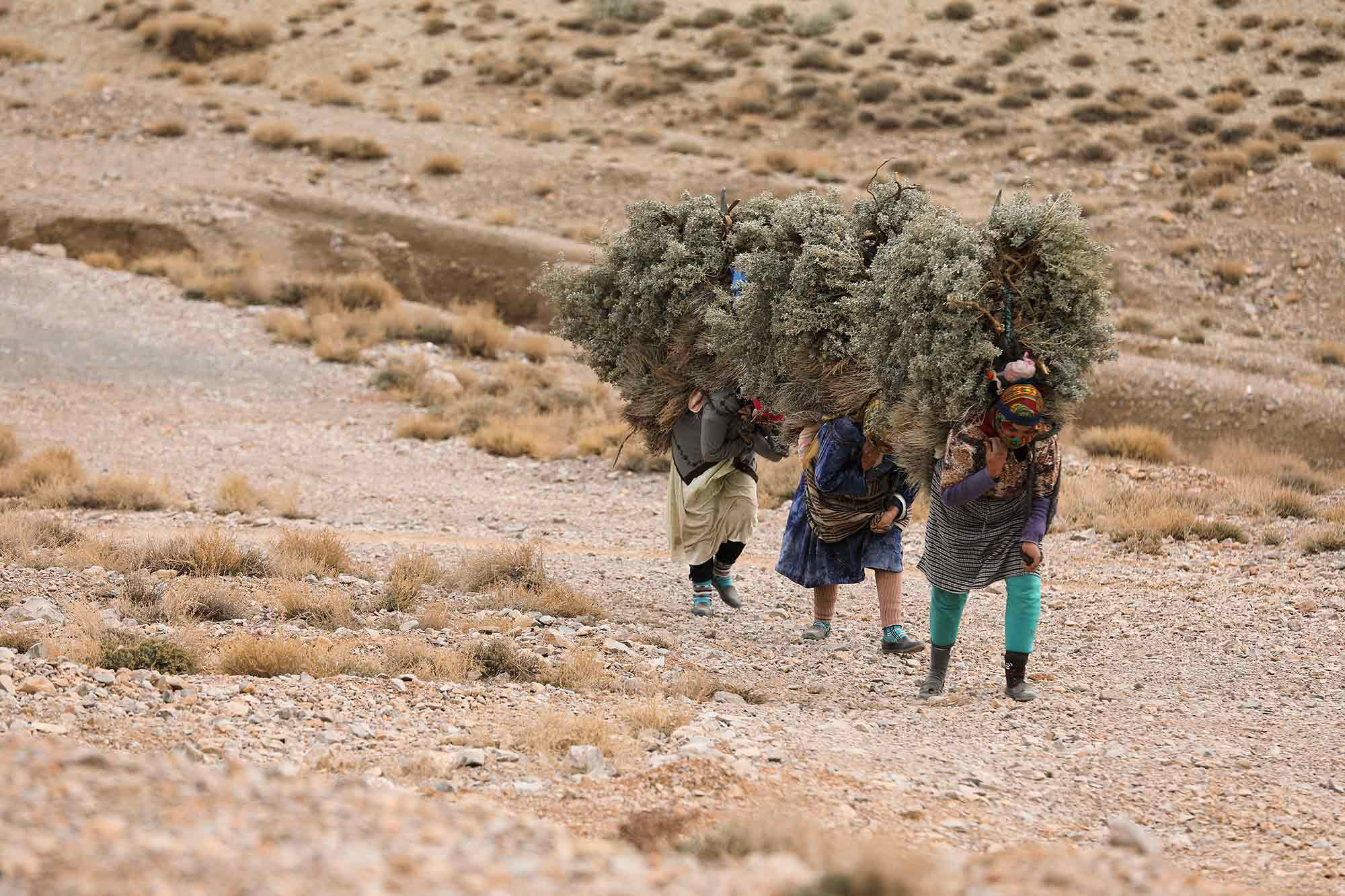 Women carrying an enormous bundle of hay in the High Atlas Mountains. © ULLI MAIER & NISA MAIER
