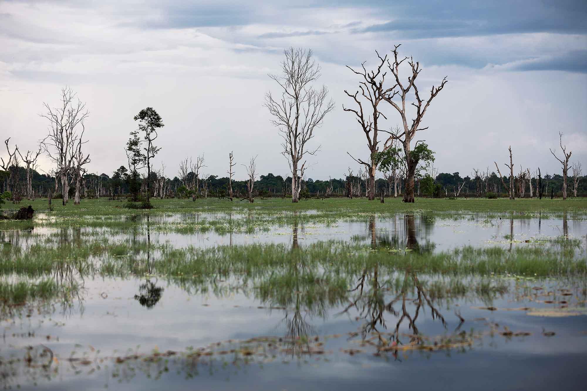 neak-pean-temple-landscape-angkor-wat-cambodia