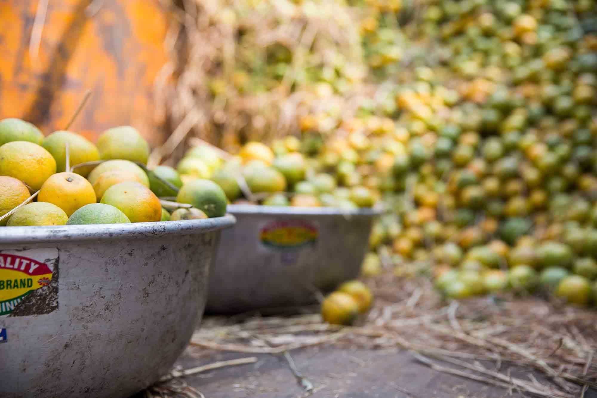 Mechhua-Fruit-Market-oranges-kolkata-india