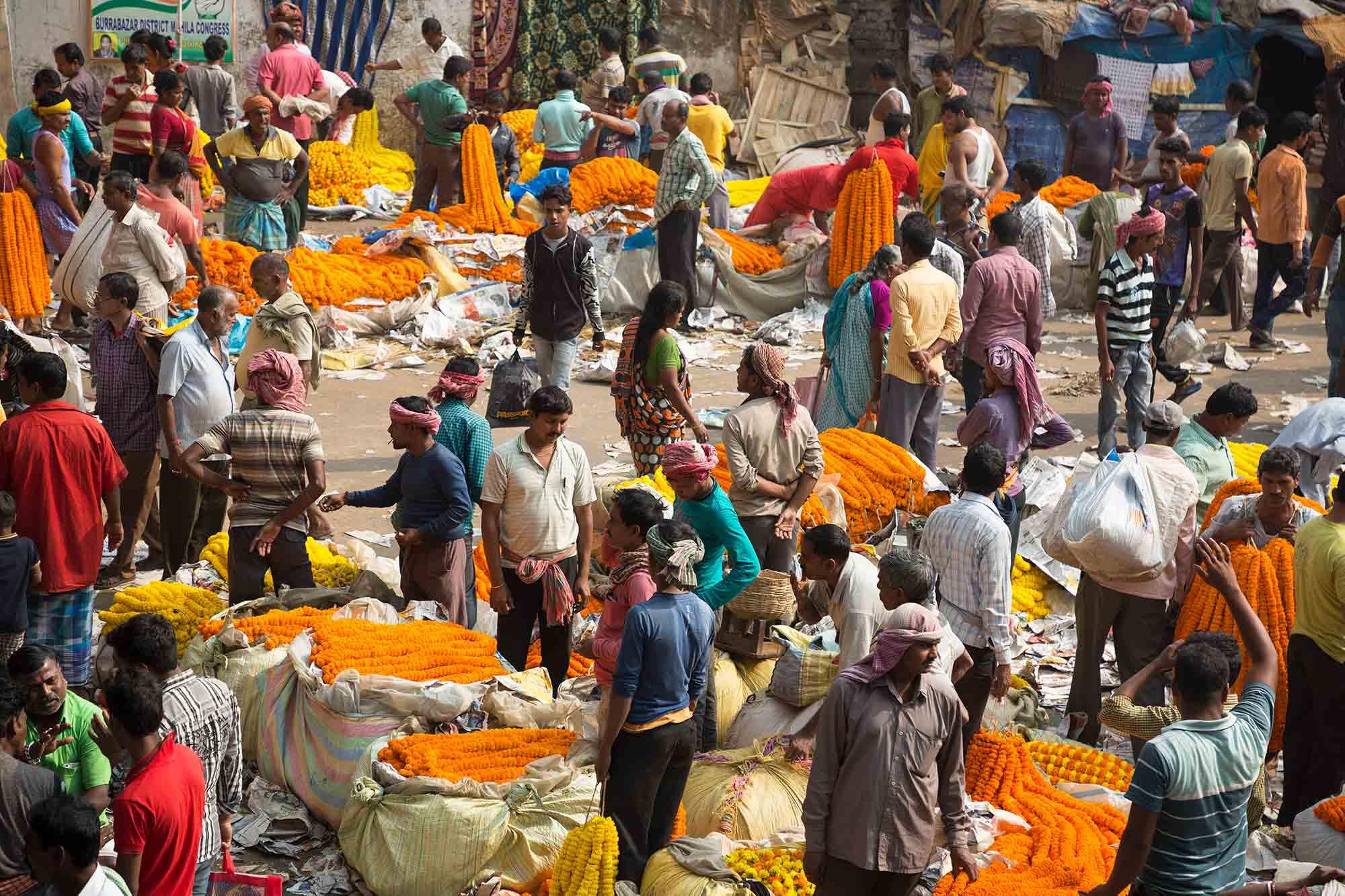 Mullick-Ghat-Flower-Market-kolkata-india-1