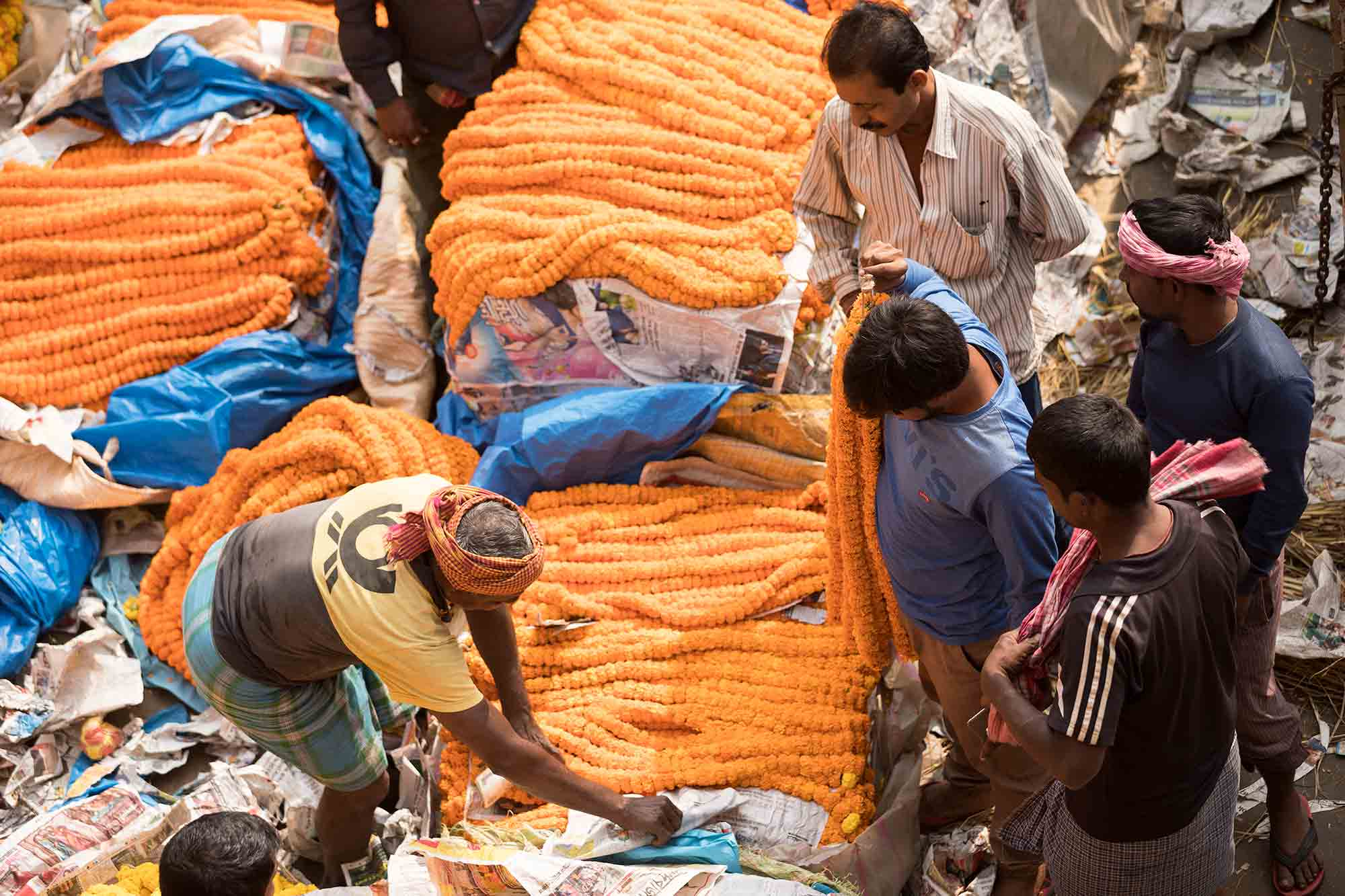 Mullick-Ghat-Flower-Market-kolkata-india